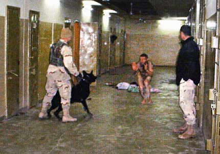 abughraib_dog_tortur