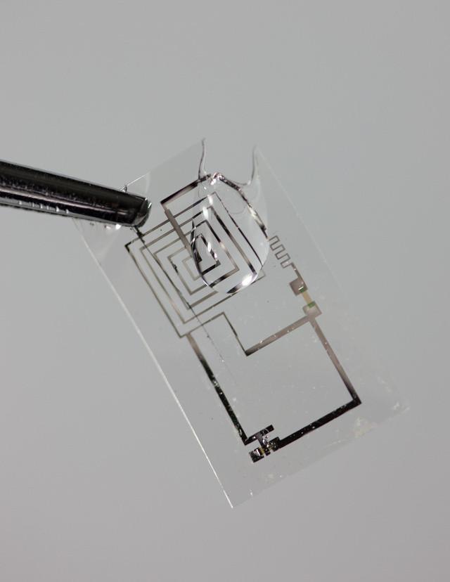 bioelectronic 3