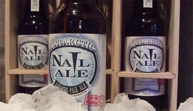 beer 10