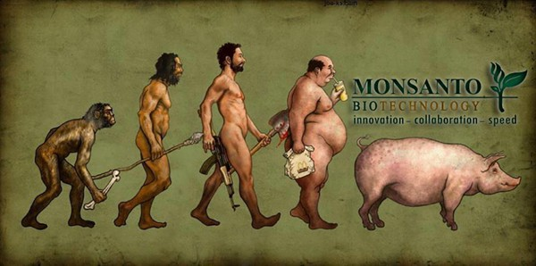 Monsanto-Evolution