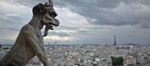 Tour de la cathédrale Notre Dame de Paris - Notre Dame Cathedra