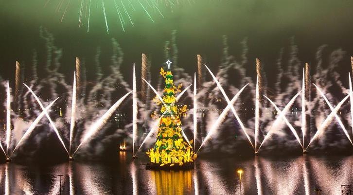 rio de janeiro christmas tree