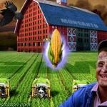 barn_dees4